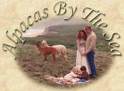 Hibbits family
