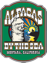 Alpacas by the Sea Logo